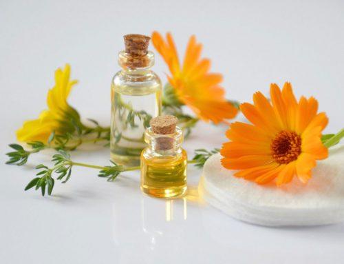 Natürlich zur Haut und ethisch im Konsum – vegane Kosmetik